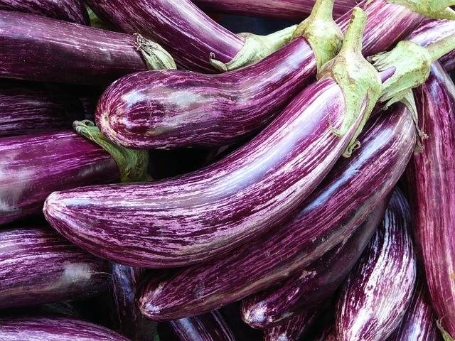 auberginen-hell